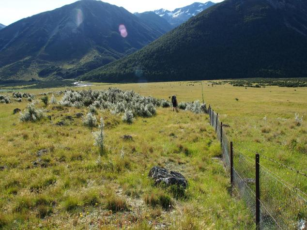 Following the fenceline from St. James Cycle track to the Waiau Pass track
